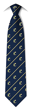 School Senior Tie